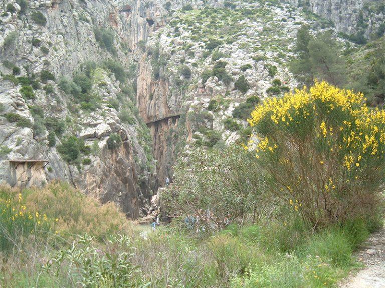 viaje-del-chorro-25-abril-2008-006_10588506184_o